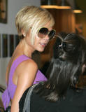 123mike HQ pictures of Victoria Th_06187_Victoria_Beckham_shopping_in_Beverly_Hills_195_123_1090lo