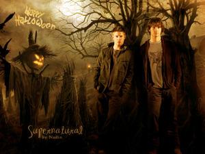 http://img153.imagevenue.com/loc446/th_181861129_Supernatural_Halloween_Nadin_7_122_446lo.jpg