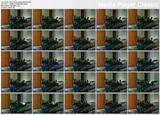 http://img153.imagevenue.com/loc598/th_01093_Momlovesbeingwatched.avi_thumbs_2014.01.28_01.35.08_123_598lo.jpg