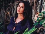[IMG]http://img153.imagevenue.com/loc972/th_14909_Monica_Bellucci_298_123_972lo.jpg[/IMG]